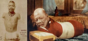Человека-гусеница – история принца Рандиана из цирка Барнума