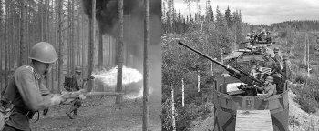 Финляндия во Второй мировой войне — история с гибкой дипломатией и удачной внешней политикой