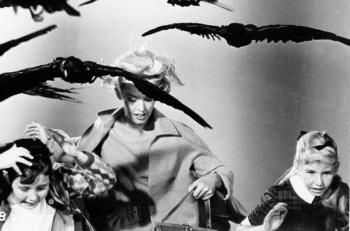 Промо фото Типпи Хедрен для хоррор-классики  «Птицы» Хичкока