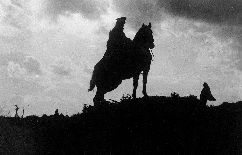 Роль Животных в Первой мировой войне в фотографиях
